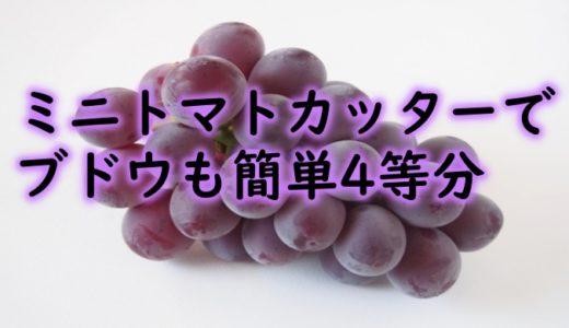 小さな子供にも安心!ミニトマトカッターでブドウも簡単に4等分!