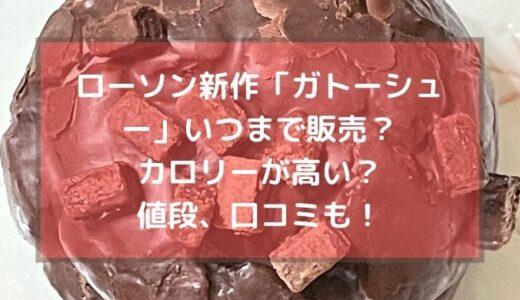 ローソン新作【ガトシュー】いつまで販売?カロリーが高い?値段や口コミ、感想も!