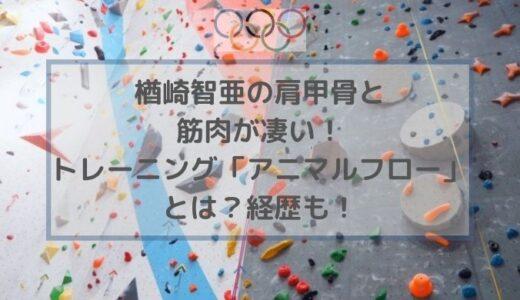 楢崎智亜の肩甲骨と筋肉が凄い!トレーニング「アニマルフロー」とは?経歴も!