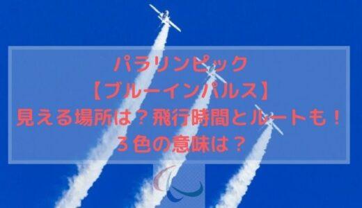 パラリンピック【ブルーインパルス】見える場所は?飛行時間とルートも!3色の意味は?